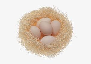 坏了的鸡蛋黄能做养花的肥料
