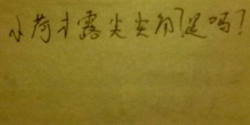 关于莲的古诗词名句