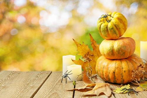 积累含秋的古诗句