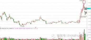 新开的证券能买什么样的股票?