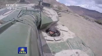 这个旅原为西藏军区步兵某团,由第13集团军某摩步师抽调骨干组成,成立于1990年.