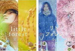 小森林 活在万物有灵的世界