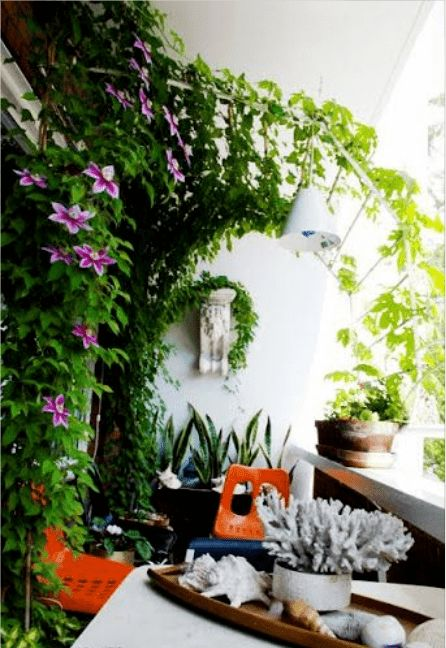 楼空调平台做成养花架