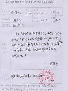上海市纳税承诺书