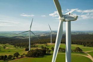 节能风电和金风科技有什么不同?