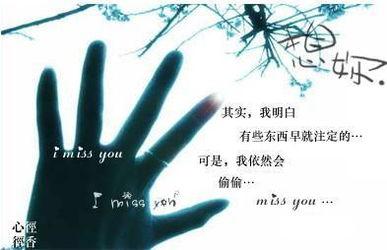 生命的顿悟 chengxiaoyan 888的blog 搜狐博客