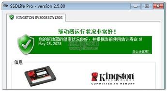 中文编程语言