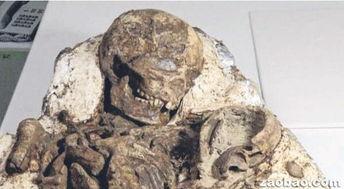 新媒 台中发掘出4800年前母抱儿化石 姿势令人动容