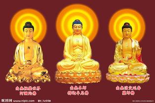 阿弥陀佛和药师佛-南无极乐世界图片