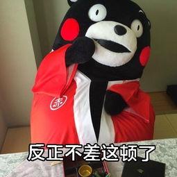 一觉醒来又饿了搞笑表情图片带字 减肥的心路历程熊本熊表情包下载 v2.3.8 9号软件下载