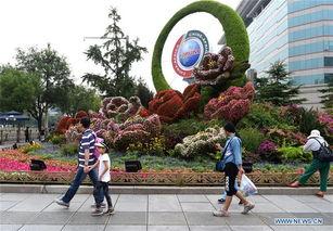 Parterres set up to greet upcoming FOCAC summit in Beijing
