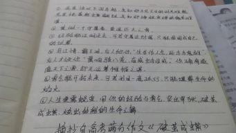摘抄优美句子作文200字