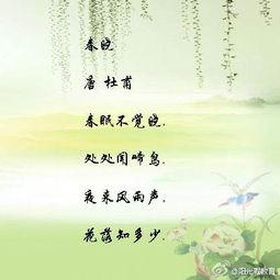 形容碧绿的古诗词