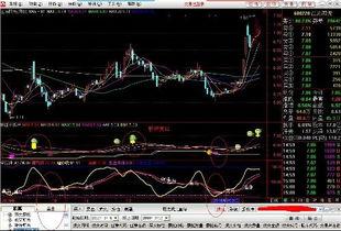 请问证券交易系统里204001是什么类型的股票,该如何开通买卖,须注意什么?