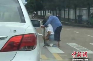 图为:后车司机拍到女司机正准备背老人过马路摄