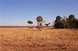 什么季节去非洲旅游攻略
