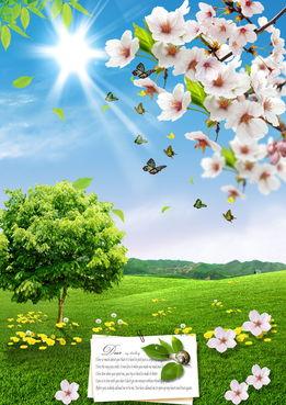 描写春天的美景佳句十字