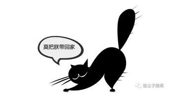 风水学里家里养猫好吗(家里养猫对风水好吗)