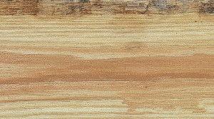 木材虫眼常识