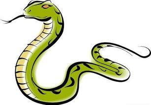 属蛇的人和什么属相最能财运最好(蛇年什么属相有财运)