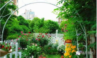 广西河池市喜欢养花吗