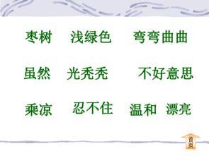 描写枣树的句子(描写枣树的句子)