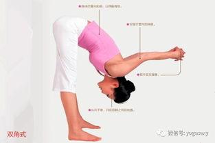 瑜伽前屈式的详细讲解