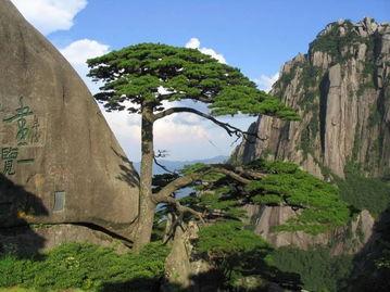 黄山2日旅游攻略