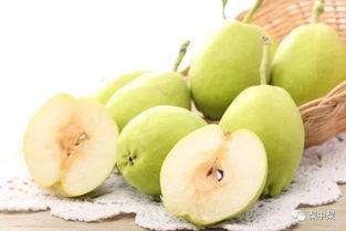 库尔勒香梨 中国唯一以 香 字命名的梨