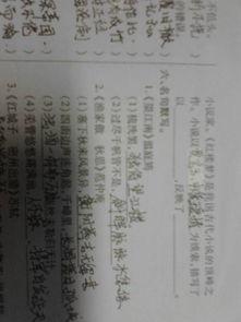 中考文学常识考察范围