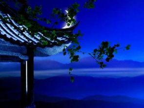 用月亮抒情的古典诗词