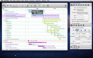 OmniPlan Pro 3.9.0 Multilingual MacOSX