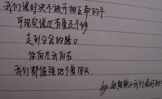 名字打分免费测试王林华(崔伟锦的姓名测试报告)