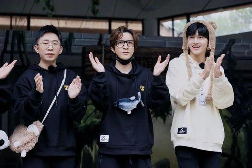 今晚2030神奇公司在哪里助力上海动物园复游,薛之谦王耀庆变黑猩猩跳舞