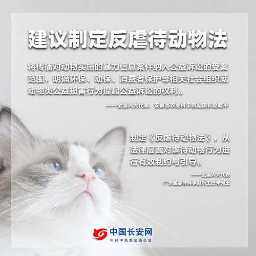 另外,在动物保护法未制定之前,赵皖平建