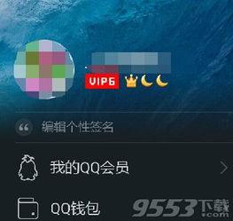 QQ头像挂件怎么用 手机qq设置头像挂件教程