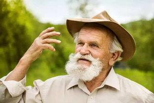 中老年人多吃毛豆预防常见疾病
