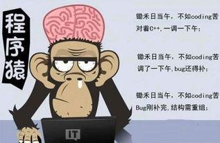 如何成为程序猿并学习编程