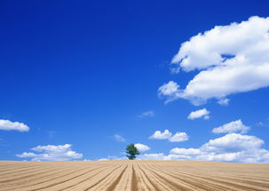 纯天空图片天空背景云朵蓝天白云素材 模板下载 2.63MB 其他大全 其他