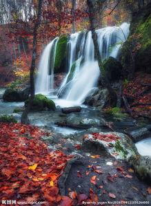 唯美林间瀑布景色图片
