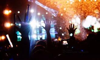 音乐节停止野蛮生长,多元化 理性化平稳发展