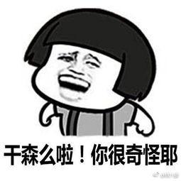 哈哈哈哈,台湾腔表情包,哈哈哈每一句都能脑补出声哈哈