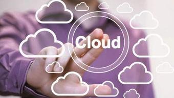 由于云服务将继续扮演重要角色,许多机构预测混合云将在生态系统中占据更为重要的组成部分.