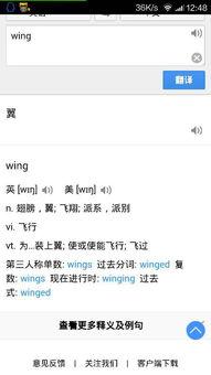 wing是什么意思中文翻译成