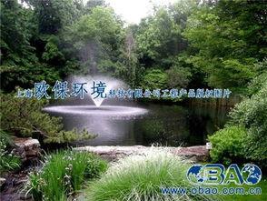415*553图片:喷泉曝气机