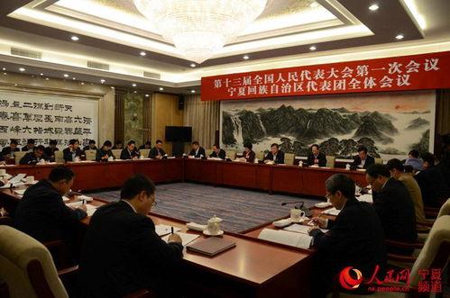 宁夏代表团举行会议审议全国人大常委会工作报告
