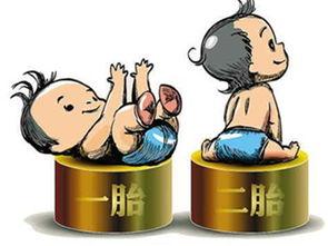 如今,国家放开了全面二胎生育政策