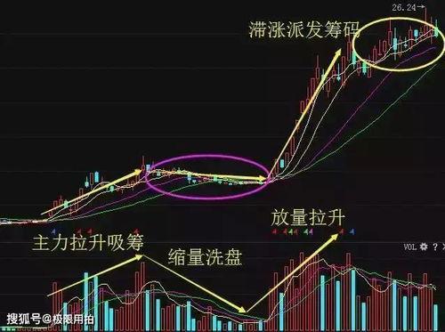 在股市里,为什么很多股民对自己的股票死抱不放?