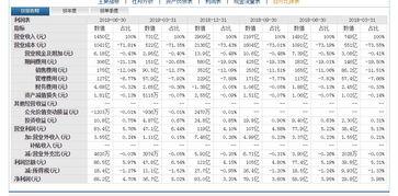 中国联通财务审计报告范文