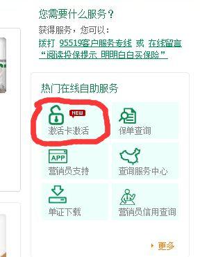 中国人寿激活卡激活平台(USIM怎么激活)